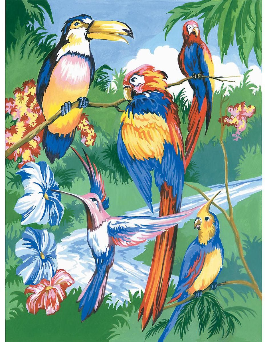 Royal & Langnickel Картина по номерам Тропические птицы ...