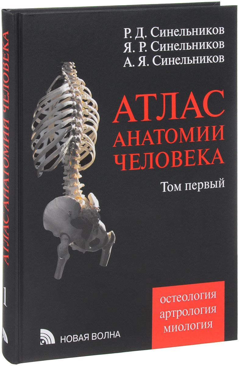 Атлас анатомии человека. В 4 томах. Том 1. Учение о костях, соединении костей и мышцах. Учебное пособие #1