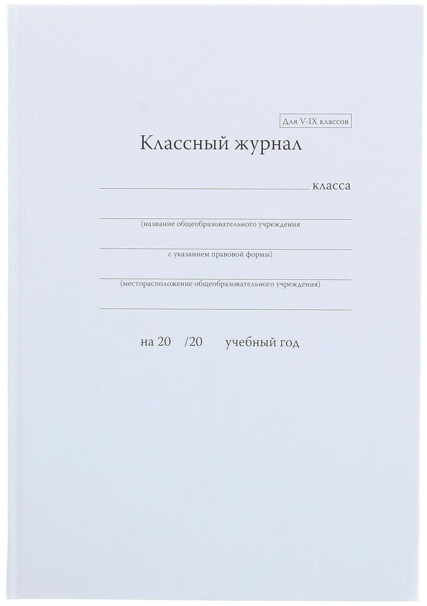 Альт Классный журнал для 5-9 классов 92 листа #1