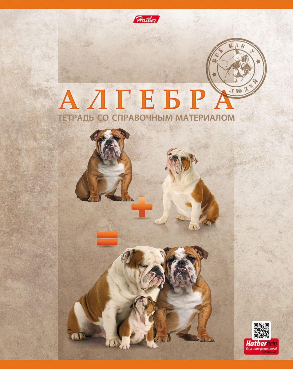 Hatber Тетрадь PRO Собак Алгебра 48 листов в клетку #1