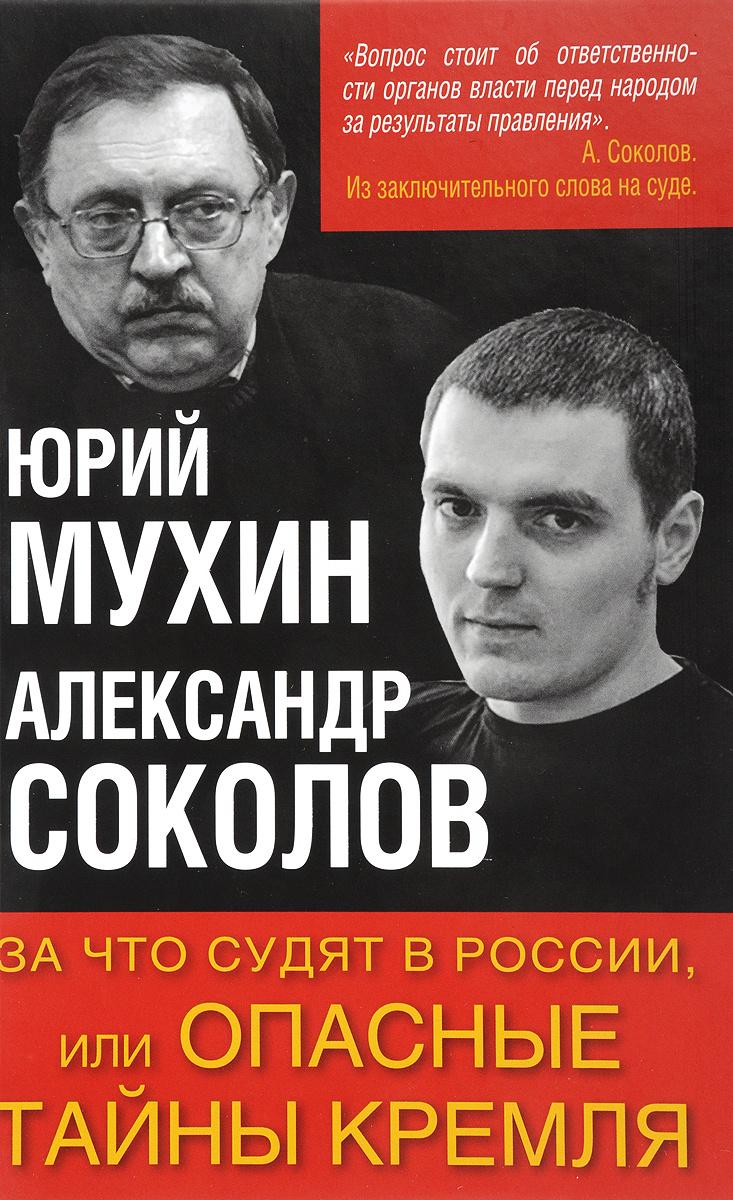 За что судят в России, или Опасные тайны Кремля | Мухин Юрий Игнатьевич, Соколов Александр Александрович #1