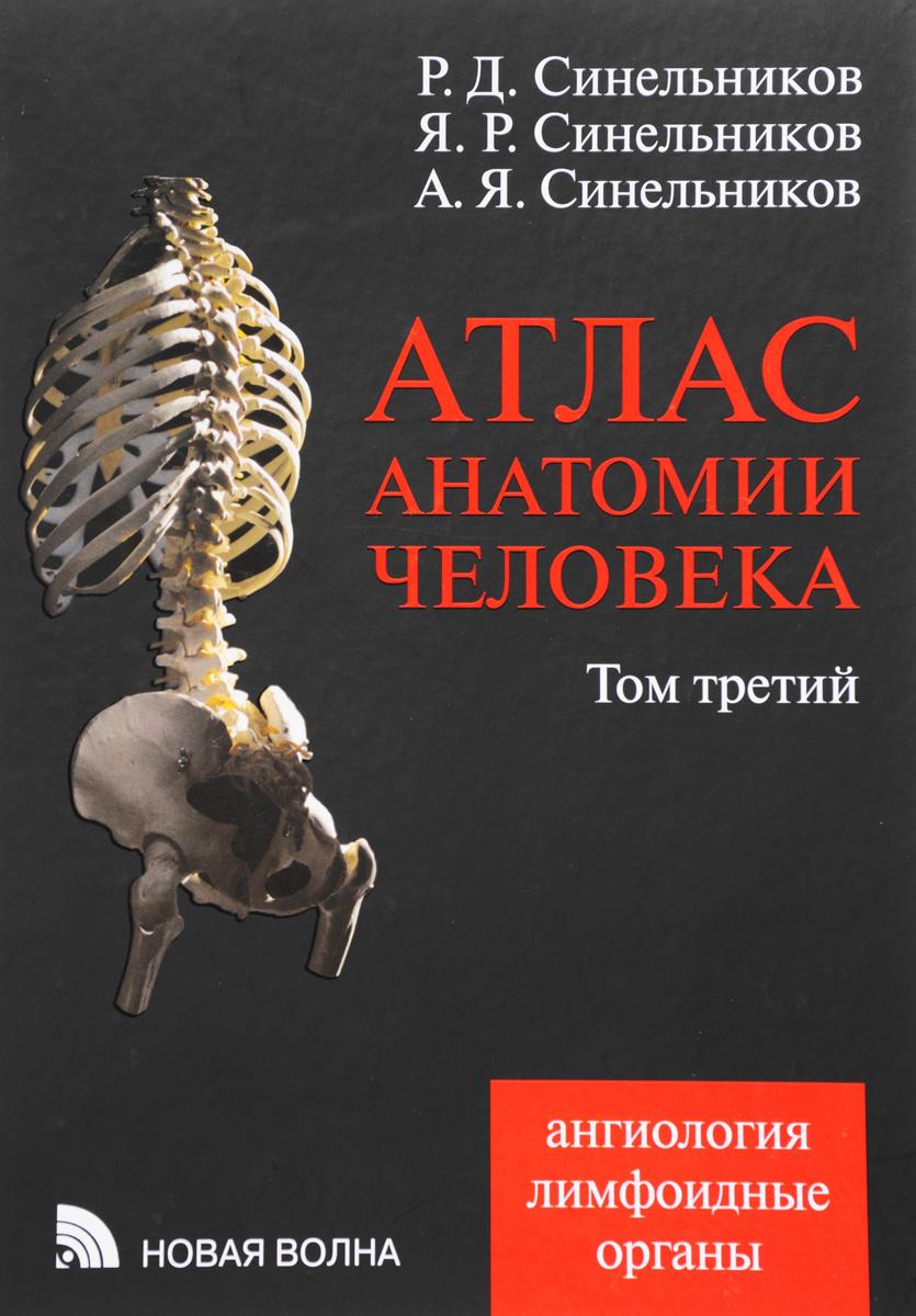 Атлас анатомии человека. В 4 томах. Том 3. Ангиология. Лимфоидные органы. Учебное пособие  #1
