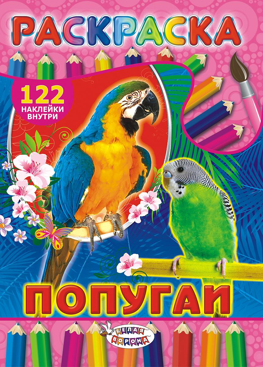 Раскраска с наклейками А4 Попугаи — купить в интернет ...