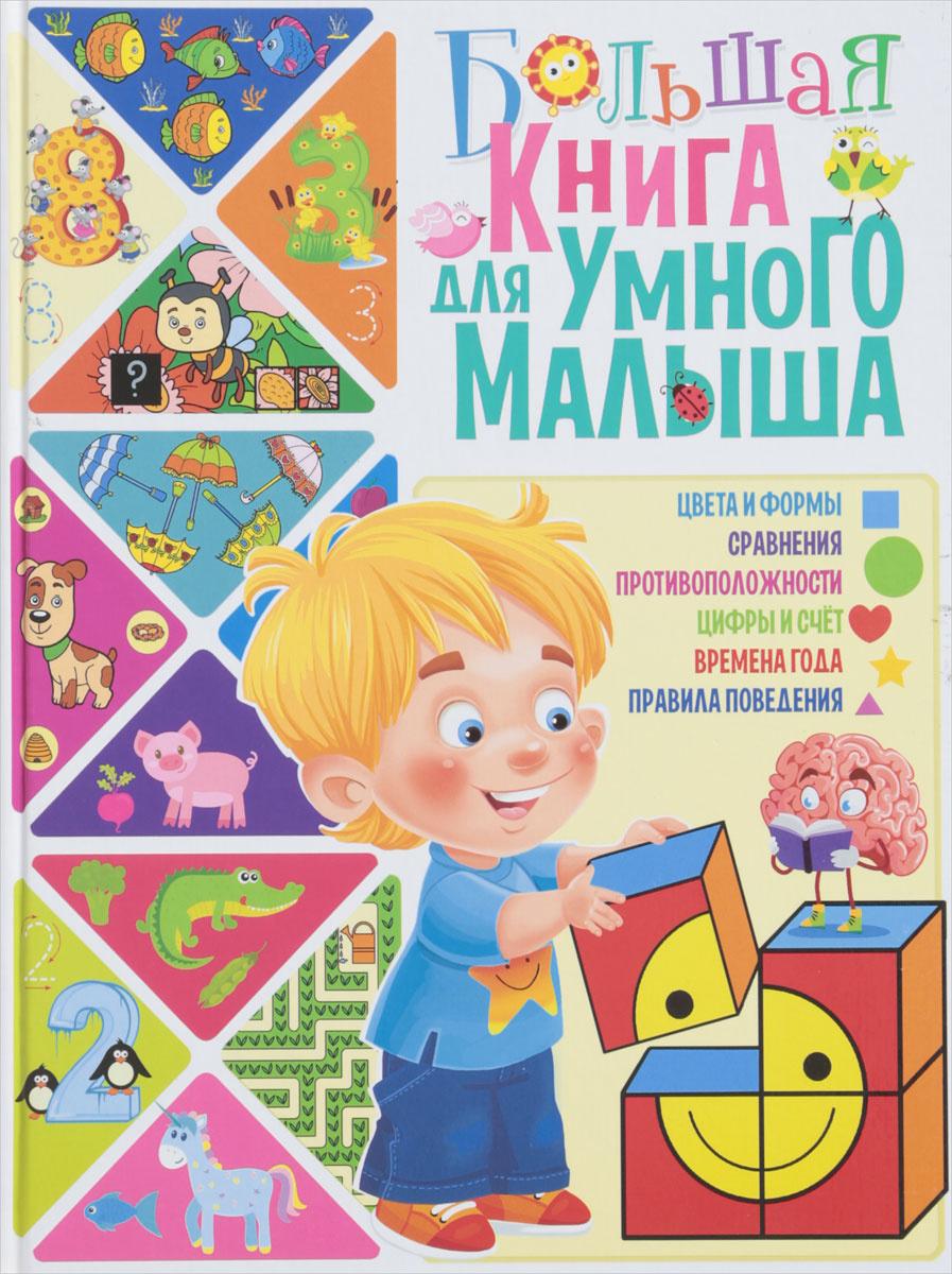 Большая книга для умного малыша | Скиба Тамара Викторовна  #1