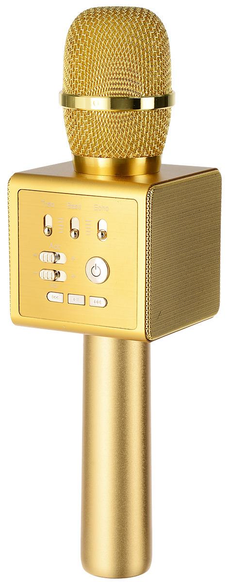 Караоке микрофон MicGeek I6, Gold #1