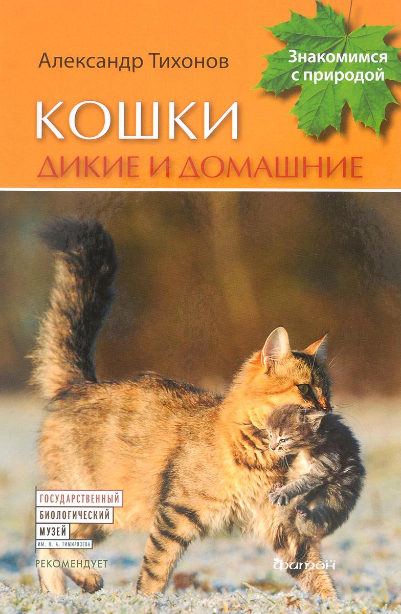 Кошки дикие и домашние   Тихонов Александр Васильевич #1