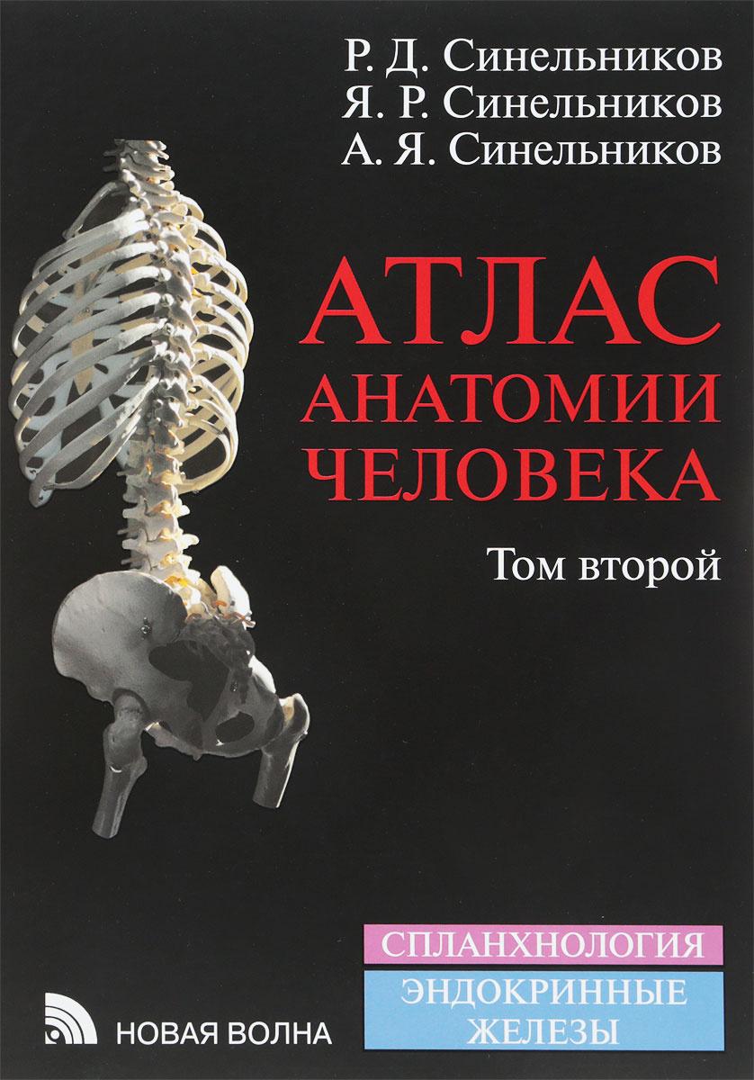 Атлас анатомии человека. В 4 томах. Том 2 | Синельников Рафаил Давыдович, Синельников Яков Рафаилович #1
