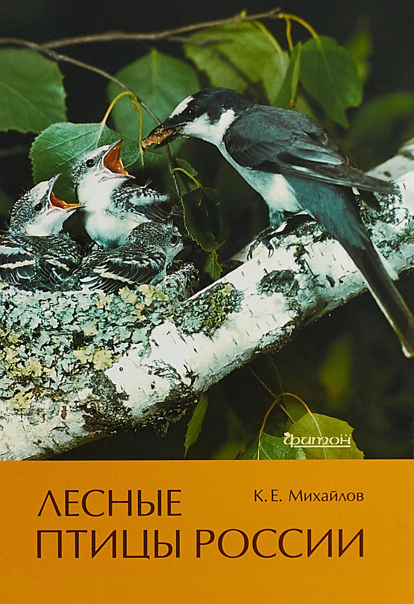 Лесные птицы России   Михайлов Константин Евгеньевич #1
