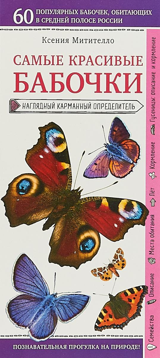 Бабочки. Наглядный карманный определитель | Митителло Ксения Борисовна  #1