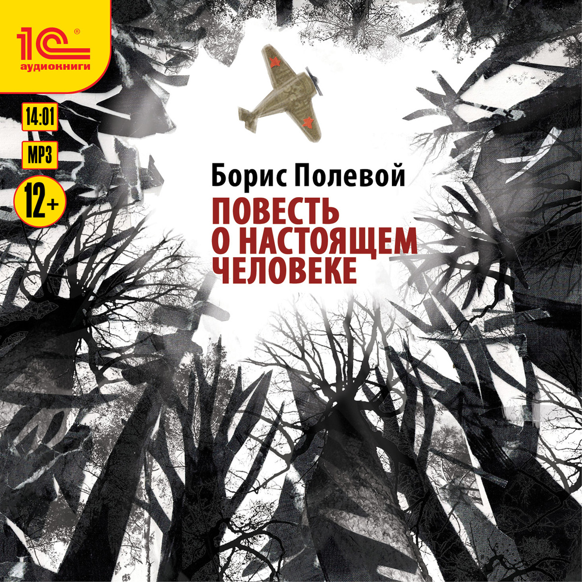 Повесть о настоящем человеке (аудиокнига MP3)   Полевой Борис Николаевич  #1