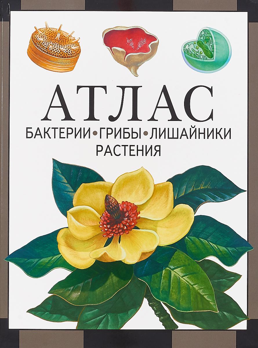 Атлас. Бактерии, грибы, лишайники, растения   Черепанов Иван Владимирович  #1