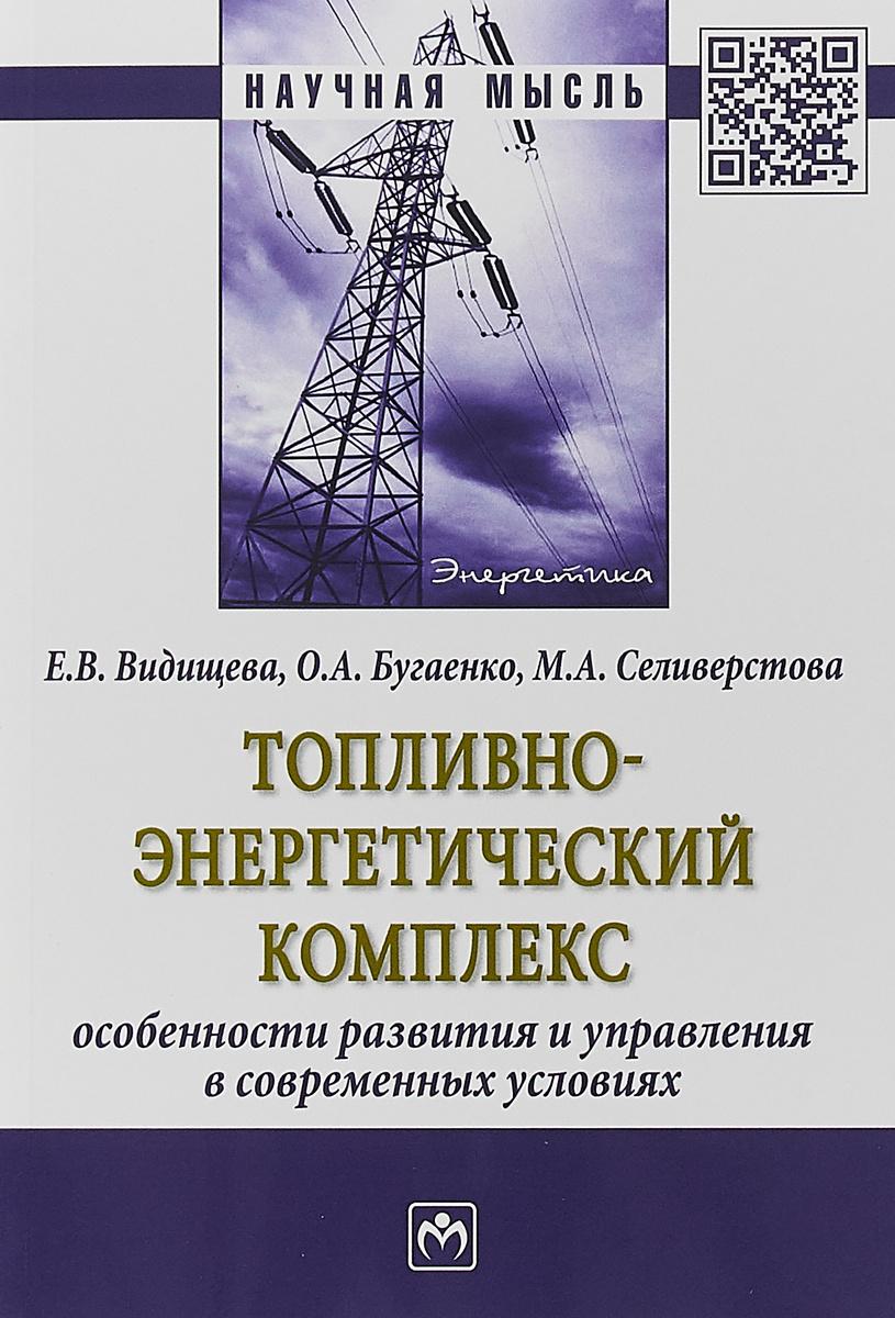 Топливно-энергетический комплекс. Особенности развития и управления в современных условиях | Видищева #1