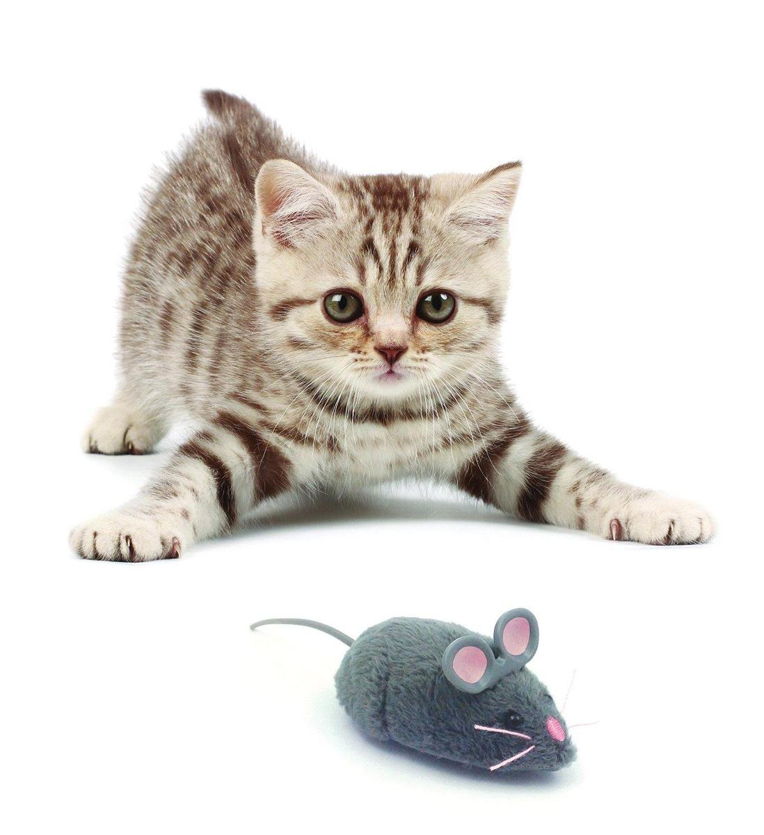 Игрушки для животных Hexbug Мышка интерактивная серая #1