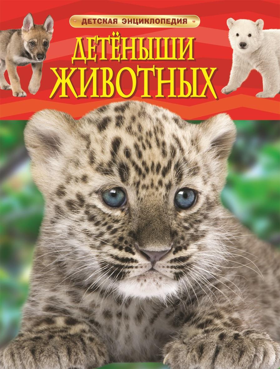 Детеныши животных. Детская энциклопедия. #1