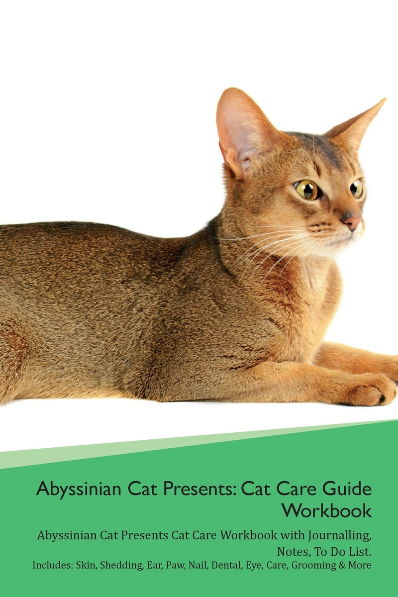 Abyssinian Cat Presents  Cat Care Guide Workbook Abyssinian Cat Presents  Cat Care Workbook with Journalling, Notes, To Do List  Includes: Skin,