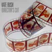 Kate Bush. Director's Cut (2 LP)