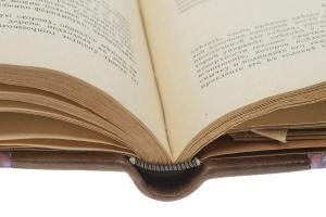 Книга о скрипке. В двух частях  ...