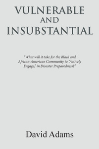 Vulnerable and Insubstantial. What Will It Take.