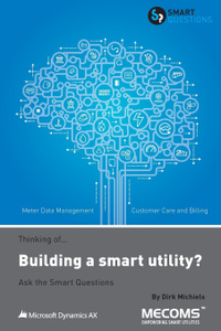 Thinking of...Building a smart utility. Ask the Smart Questions