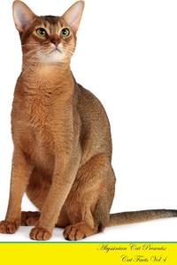Abyssinian Cat Presents. Cat  ...