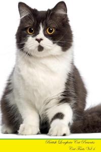 British Longhair Cat Presents.  ...