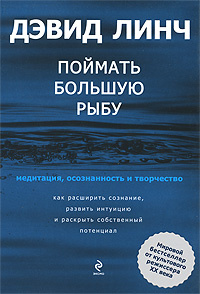 Обложка книги Поймать большую рыбу. Медитация, осознанность и творчество, Линч Д.