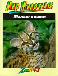 Обложка книги Малые кошки,