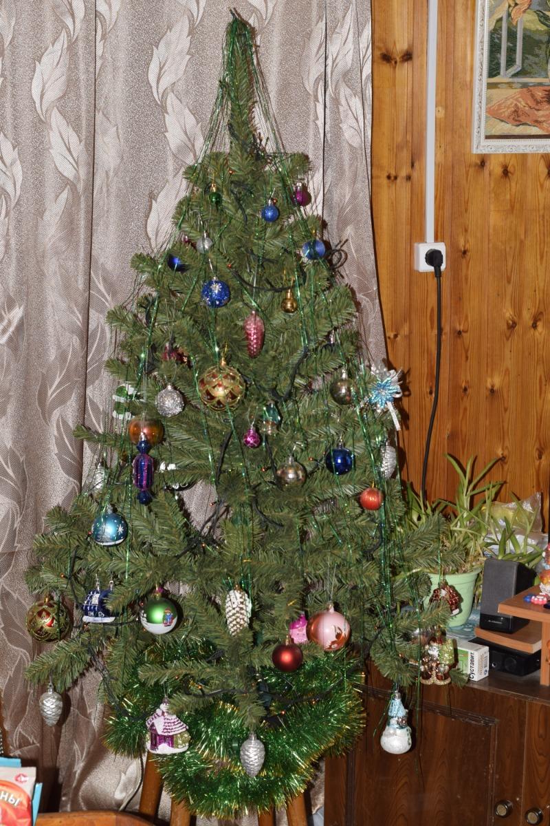 невдалеке елка в легких фото цена