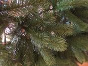 Искусственная Елка National Tree Company, Литая+ПВХ, 183 см #11, Баранова Елена