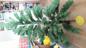 Искусственная Елка National Tree Company, Литая+ПВХ, 183 см #10, Серегина Виктория Викторовна