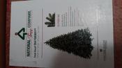 Искусственная Елка National Tree Company, Литая+ПВХ, 183 см #9, Серегина Виктория Викторовна