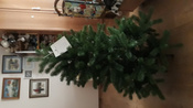 Искусственная Елка National Tree Company, Литая+ПВХ, 183 см #7, Серегина Виктория Викторовна