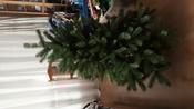 Искусственная Елка National Tree Company, Литая+ПВХ, 183 см #6, Серегина Виктория Викторовна