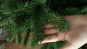 Искусственная Елка National Tree Company, Литая+ПВХ, 183 см #3, Серегина Виктория Викторовна