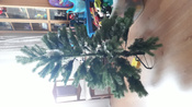 Искусственная Елка National Tree Company, Литая+ПВХ, 183 см #1, Серегина Виктория Викторовна