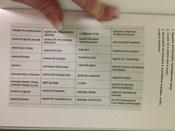 Творческий беспорядок (Mess). Блокнот с нестандартными заданиями - (англ. обложка) | Смит Кери #5, Иро4ка