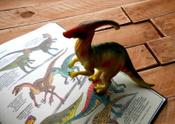 Динозавры. Научный комикс | Рид Эм-Кей #14, Волкова Наталья