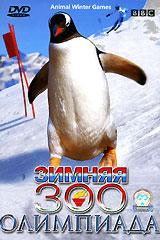 BBC: Зимняя ЗОО - Олимпиада
