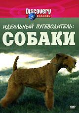 Discovery: Идеальный путеводитель: Собаки