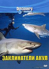 Discovery: Заклинатели акул