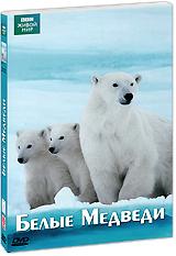 BBC: Белые медведи