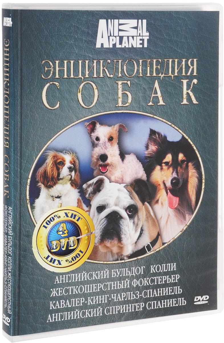 Discovery: Все о собаках. Часть 2 (4 DVD)