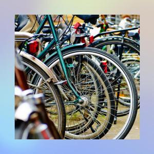 Какие бывают виды велосипедов: краткий обзор