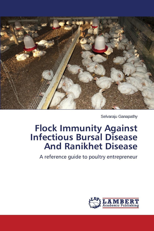 Flock Immunity Against Infectious Bursal Disease And Ranikhet Disease