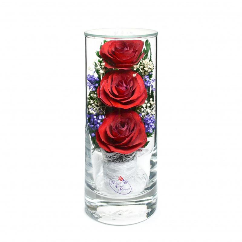 стабилизированные цветы в стекле в вакууме, не вянут 7 лет - nfslr