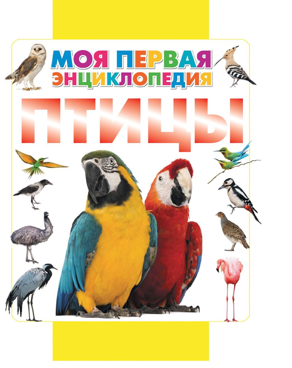 Птицы   Нет автора #1