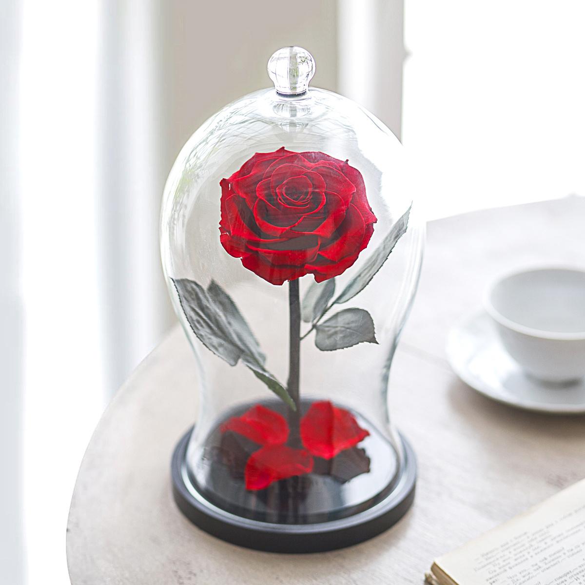 Долговечная стабилизированная роза в стеклянной колбе Premium X - Notta & Belle  #1
