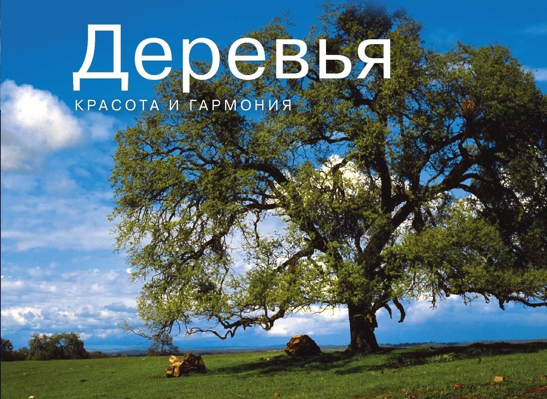 Парселл Лиза. Деревья. Красота и гармония | Парселл Лиза