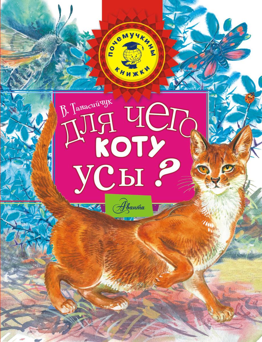 Для чего коту усы? | Нет автора #1
