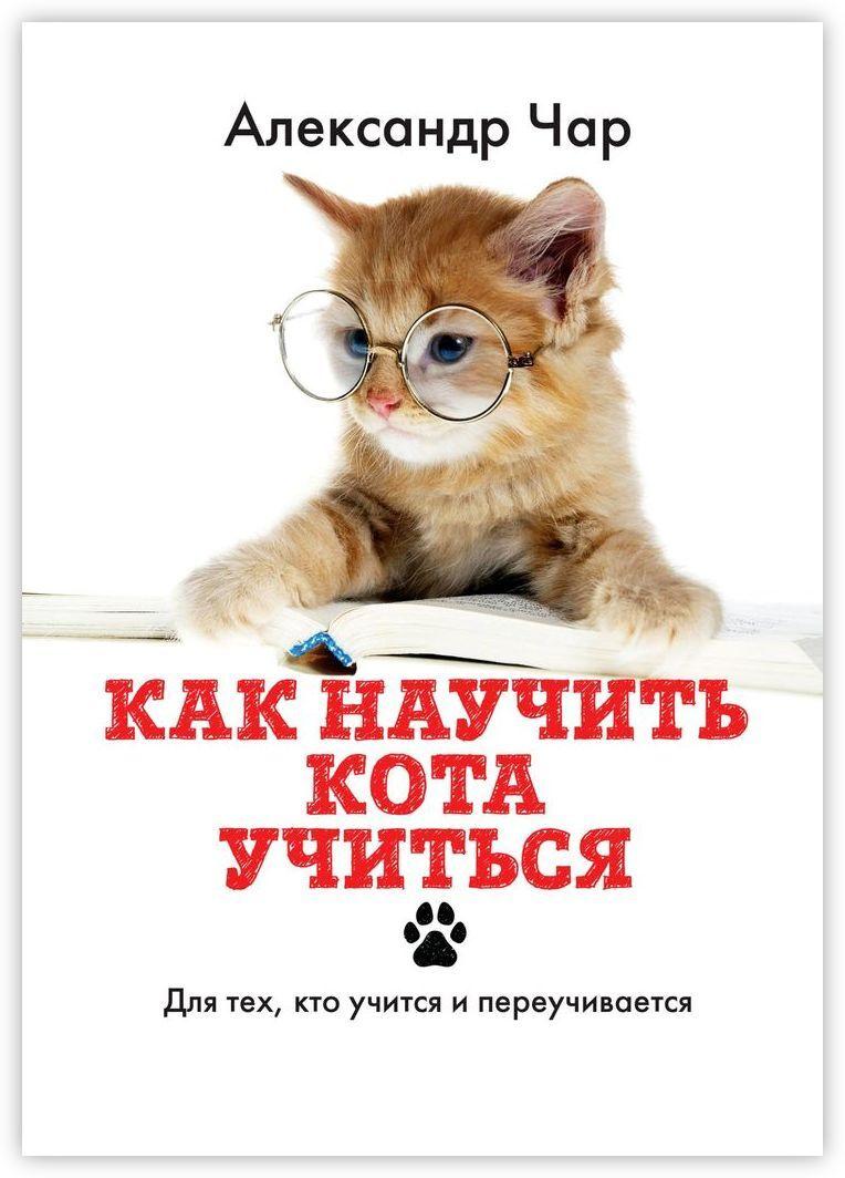 Как научить кота учиться #1